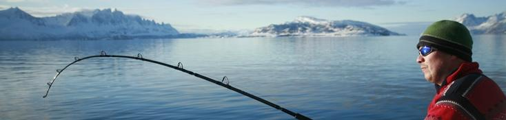 Sea fishing in Norway