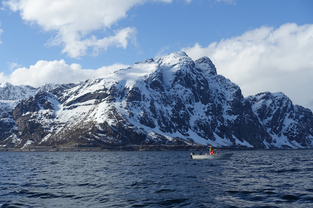 /pictures/molnar/FS/4-April in Lofoten-3.JPG
