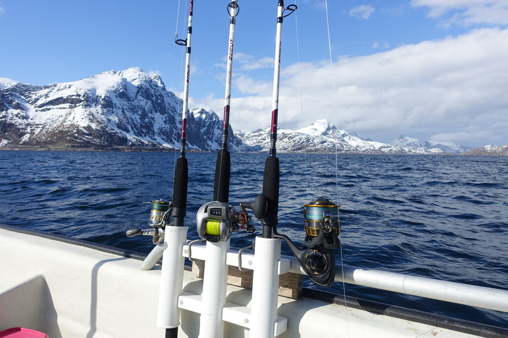 /pictures/molnar/FS/4-rods on board-Lofoten-2.JPG