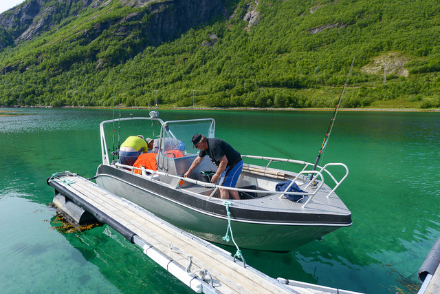 /pictures/stra/FS/straumfjord-fs-20150713-800_8658.jpg
