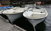 Feste boat 1 -  17,5ft/40 hp echos
