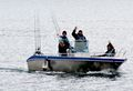 Havnnes Handelssted boat 05-  19ft/50 hp e/g/c